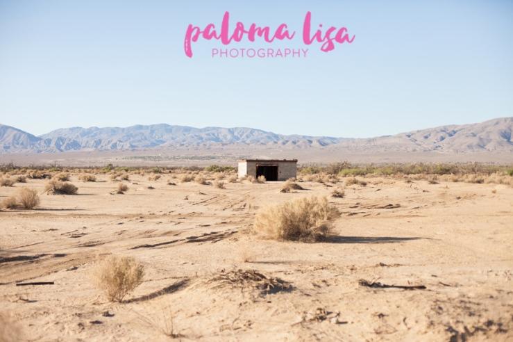 WEBChristina-Borrego-PalomaLisaPhotography-152