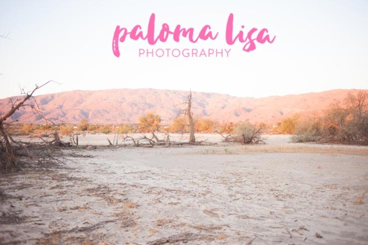 WEBJanelle-Borrego-PalomaLisaPhotography-6